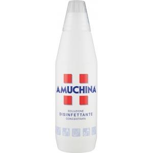 Amuchina Disinfettante concentrato 1,00 l - 68671