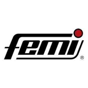 Logo Femi